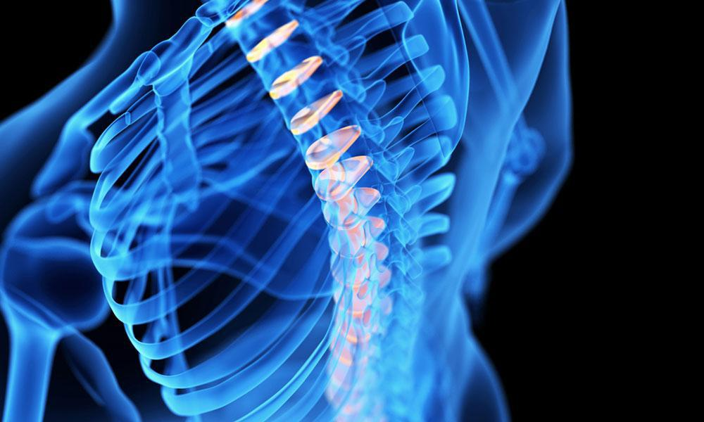 Healthy Spine: The Ultimate Guide